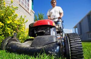 landscaping business website 1